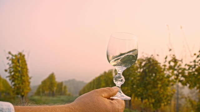 SLO MO Glass Of Wine In The Vineyard
