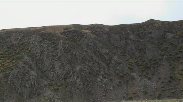 WS ZI Goats grazing on hillside / Rural, Tibet