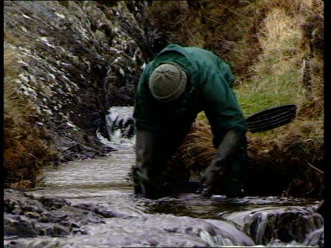 County Mayo MS Mountain stream PAN RL ZOOM IN prospector panning for gold TMS Gold in sieve INTVW SOF quotthe grade grams per tonnequot CMS Gold...
