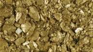 Gold nuggets panned from a river in the Ecuadorian Andes