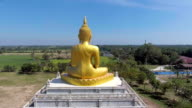 Golden Buddha statue among rice paddy in countryside, Aerial video