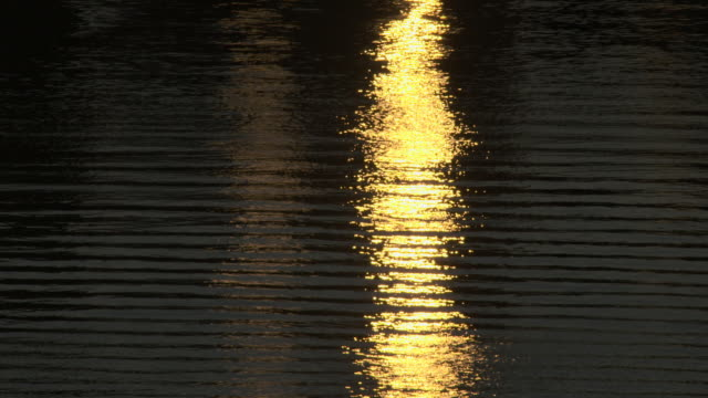 Golden sunshine reflects on the Hudson River