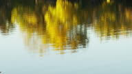 Golden tones of autumn are reflected on the surface of the water in a quiet pond.