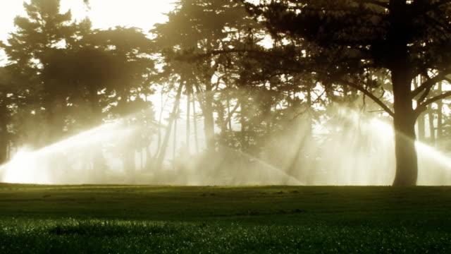 Golf Course Sprinklers at Sunrise