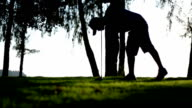 golf player make tee off on a golf course ,Silhouette
