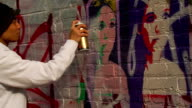Graffiti Artist Painting Urban Wall