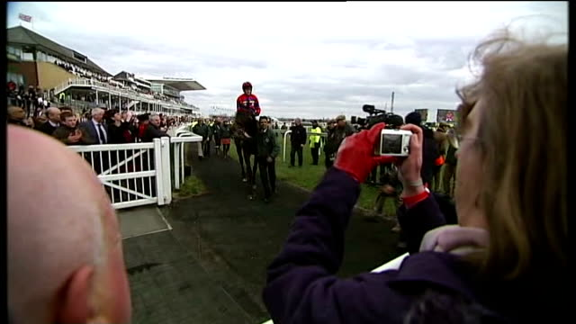 Second horse killed Man looking at race through binoculars Wide view of crowd and course from Grandstand Close shots racegoers David Muir interview...