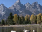 Grand Teton: Shallow stream and rugged peaks