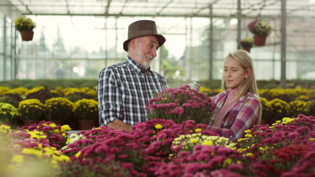 Grandfather and granddaughter at greenhouse