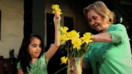 MS Grandmother and granddaughter arranging daffodil flowers / Los Angeles, California, USA