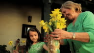MS Grandmother and granddaughter (2-3) arranging yellow daffodils
