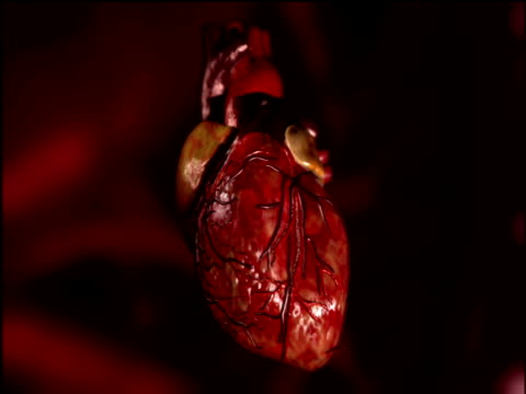 Graphic of beating human heart against red background