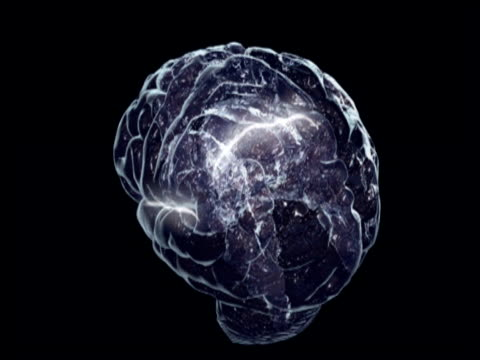 Graphic of brain rotating around on a dark background. Brain activity highlighted by the illumination of sections of the brain as it rotates.