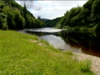 Grassy bank sloping down to river surrounded by forests weir in distance shimmering in sunlight