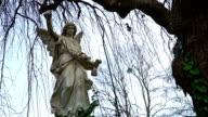 Ernstige Angel onder Treurwilg