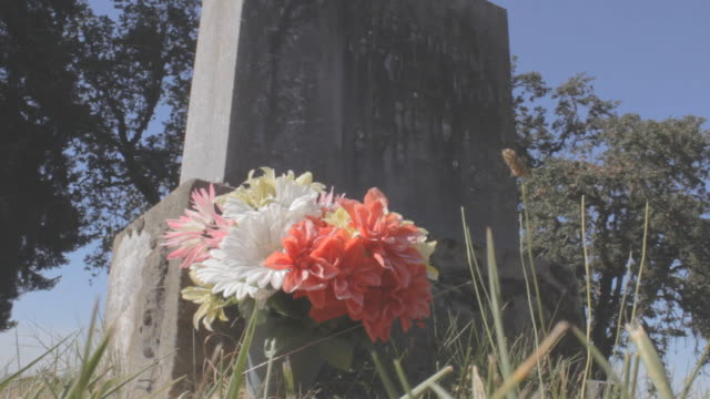 Grave stone with red white flower in foreground