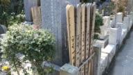 Grave stones of temple cementary in Kamakura, Japan