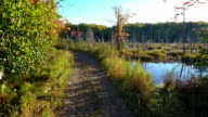 Gravel road along creek i Upper Peninsula of Michigan