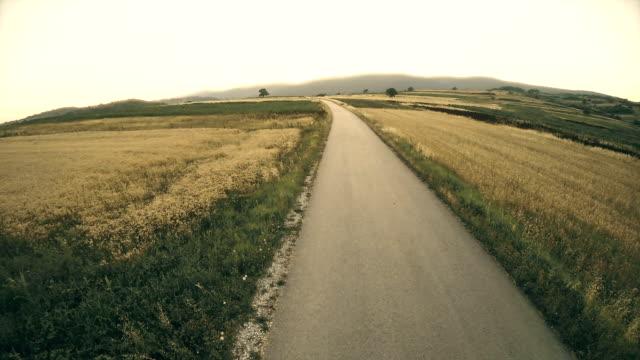 Gravel Road Runs Between Corn and Soybean Fields