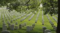 MS PAN Gravestones at Arlington National Cemetery, Section 33, Arlington, Virginia, USA