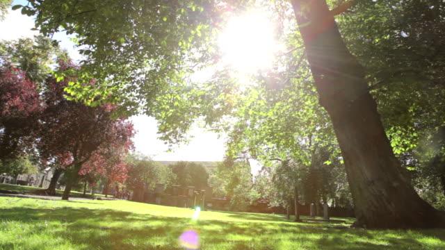 Friedhof an einem sonnigen Tag