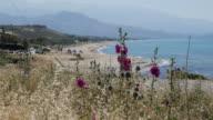Greece Crete Aegean coast with hollyhocks and beach