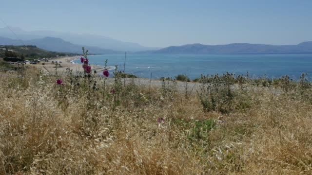 Greece Crete Aegean coast with hollyhocks and weeds