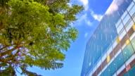 Green business-Stadt