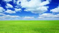 Verde campo e cielo blu-HD