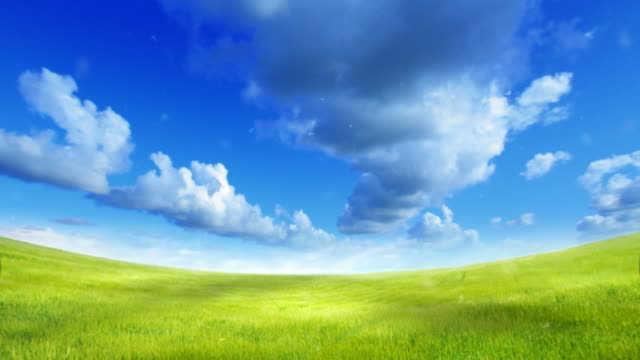 Green field over blue sky