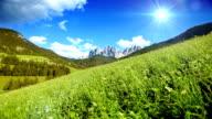 Grünen Feld unter blauen Himmel