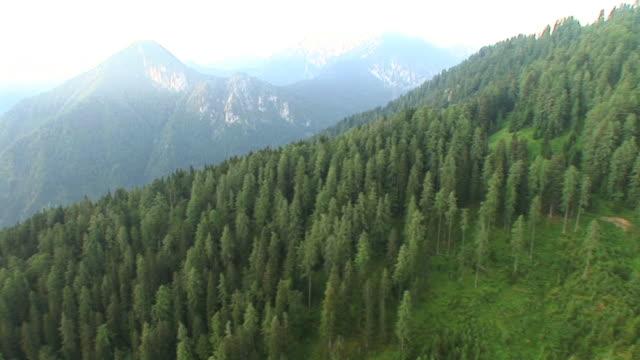 HD: Green hills