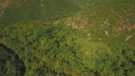 Grüne Landschaft – Luftbildvideo