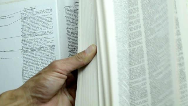 green leaf in a book