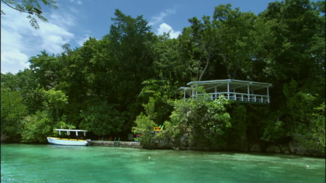 WS Green river flowing past gazebo in trees / Ocho Rios, Jamaica
