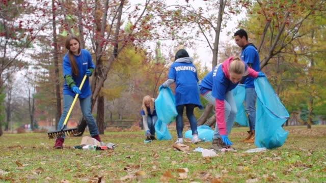 Green Volunteers