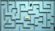 HA, WS, Grey mouse searching for peace of cheese in maze