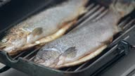 Grilled fish close up.