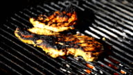 Grilling Chicken Breast in Charcoal during a Street Festival