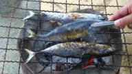 grilling fishes