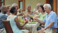 MS, Group of Baby Boomer Couples Eating Together Outside, Toasting with Wine, Richmond, Virginia, USA