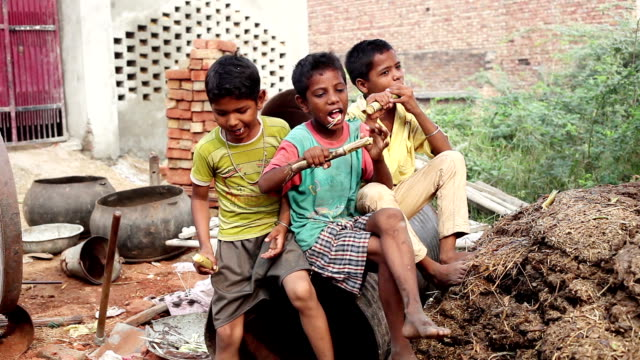 Group of children enjoying sugarcane