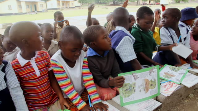 MS Group of eager schoolchildren observing teacher / Save Valley, Southern Zimbabwe, Zimbabwe