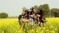 Group of friends enjoying music in the farm, Punjab, India