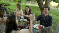 Group of friends toasting at an outdoor party