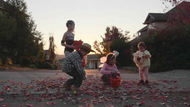 4K UHD: groep jonge geitjes in Halloween kostuums verzamelen bladeren