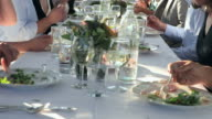 TU MS Group of people dinning at banquet table outside in field/Washington, USA