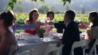 PAN WS Group of people toasting at banquet table set for dinner outside in field/Washington, USA