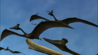 CGI, LA, Group of Pterosaurs  flying against clear sky