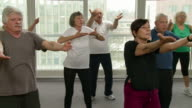 HD: Group Of Seniors Exercising With Tai Chi
